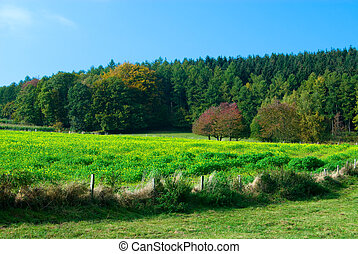 countryside landscape - beautiful countryside landscape in...