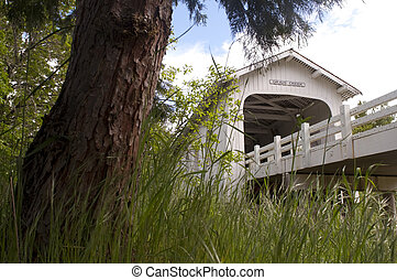 Grave Creek Covered Bridge Sunny Valley Vintage Road