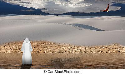 Holy man walks on water in desert flood