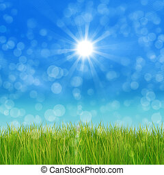 Green grass and blue sky - Summer nature background with 3d...