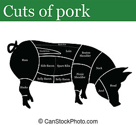 Cuts of pork or pig background, vector illustration