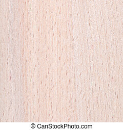 beech wood furniture board background