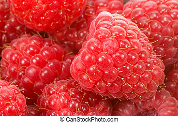 fresh raspberry background - close-up of fresh raspberries...