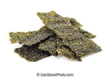 seaweed - Seaweed on white background