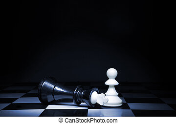 Game of chess - A pawn and the won king Game of chess