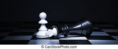 The chess - A pawn and the won king. Game of chess