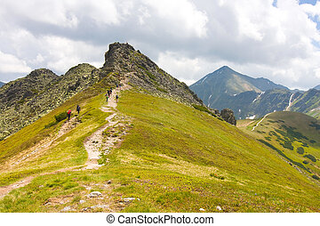 Tatra Mountains - Chocholowska Valley - Tatra Mountains -...