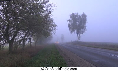 cars on asphalt road and fog