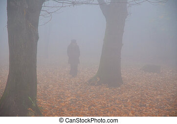 Woman walking in the fog with autumn leaves and trees