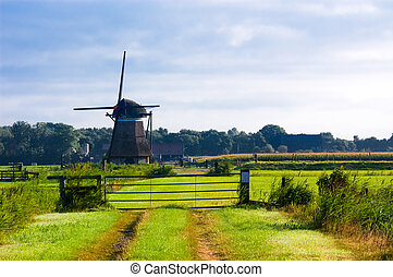 dutch windmill landscape - beautiful scenery of a typical...