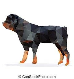 rottweiler, vector