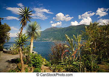 Palm trees and mountains with a lake and blue sky with...