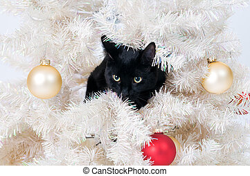 naughty christmas cat - black cat in a christmas tree