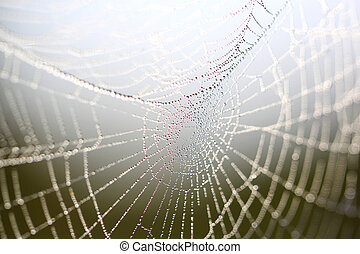 Beautiful Wide Web - The Web with a few drops of water in...