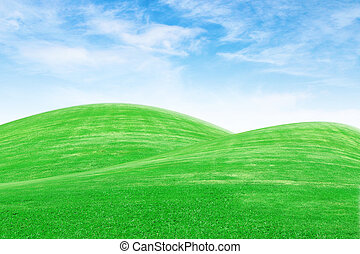 green grass hills with sky