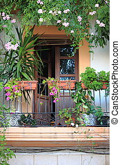 Balcony with flowers - Old balcony with plants and flowers