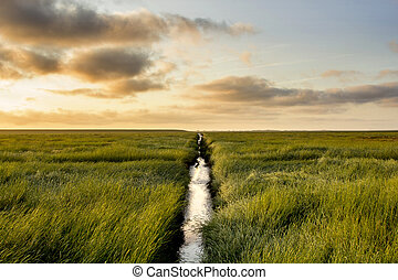 Salt Meadow during sunrise - Salt Meadow with a small ditch...