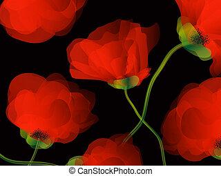 Poppy background illustration