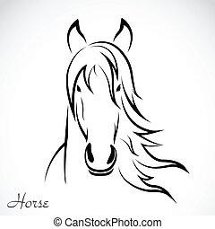 vetorial, imagem, cavalo