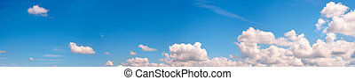 Blue sky panorama - Blue height sky above the forest with...