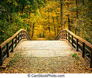 Bridge in autumn park - Wooden bridge in the autumn park