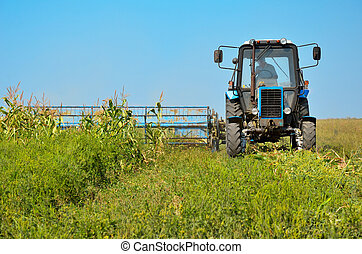 Old tractor mowing corn in the field closeup. Green grass,...