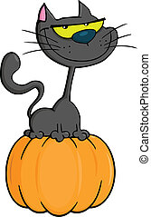 Black Cat On Pumpkin Illustration