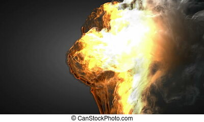 burning skeleton OK sign. Alpha matted