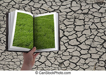 Dry cracked land, Grass in past, Concept