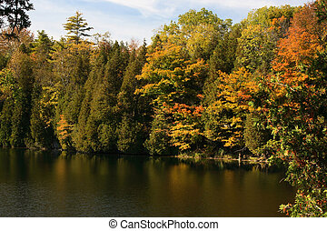Tress in Fall colours around the lake and their reflection...
