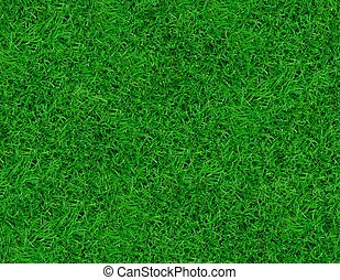 Grass background - Close-up image of fresh spring green...