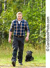Lie down - Dog owner trains his labrador retriever, dog lie...