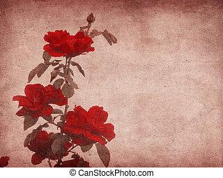 rosas,  grunge