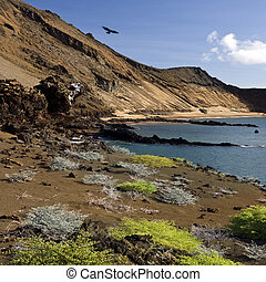 Galapagos Islands - Ecuador - Volcanic landscape on the...