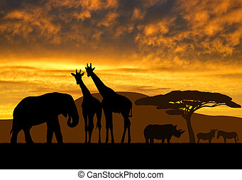 giraffes,elephant and rhino over sunrise