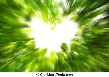 Love nature concept - Beautiful leaves blurry background...