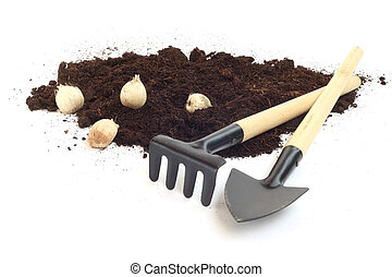 Gardening tools and flower bulbs
