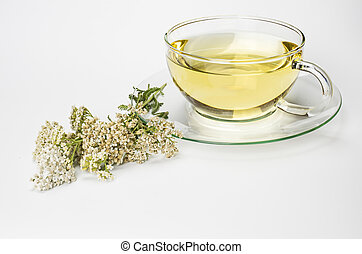 Tea of common yarrow in a glass cup - Glass cup and fresh...