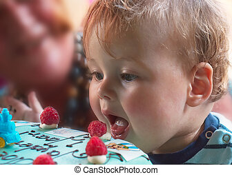 young boy on birthday - young boy on his first birthday