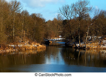 winter landscape - A lake in winter