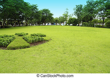 green grass field in garden