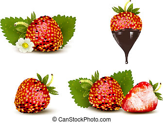 Set of ripe sweet strawberry and flower with leaves and...
