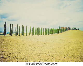 San Quirico Orcia, Tuscany, Italy retro looking - View of...