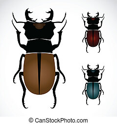 Stag beetle, the largest beetle , Vector illustration