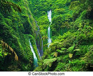 Madakaripura Waterfall, East Java, Indonesia - Madakaripura...