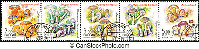 RUSSIA - CIRCA 2003: A stamp printed in Russia shows Twin...