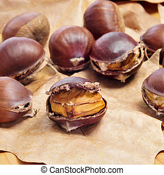 some roasted chestnuts, typical snack in All Saints Day in...