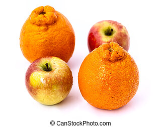 Apples with Oranges. Studio Shot on White Background