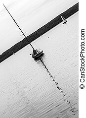 Abstract Sailing Boat - A sailing boat on a calm lake. Black...