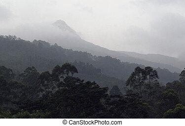 Adam's peak, Sri pada - Adam's Peak also Sri Pada on a foggy...